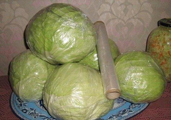 хранить капусту в пищевой пленке