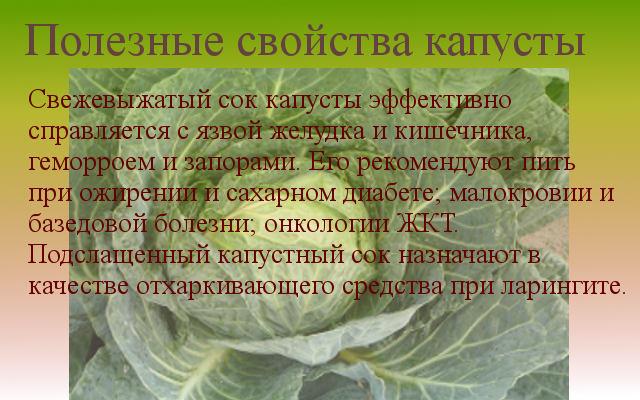 свойства капусты