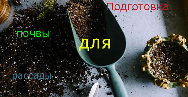 подготовка почвы для и рассады