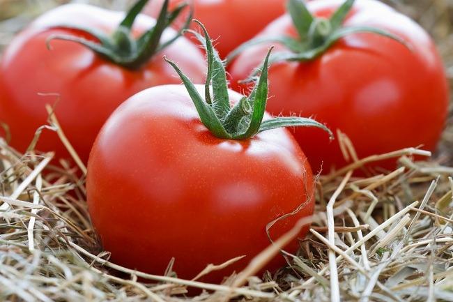 томаты для свежего потрбления