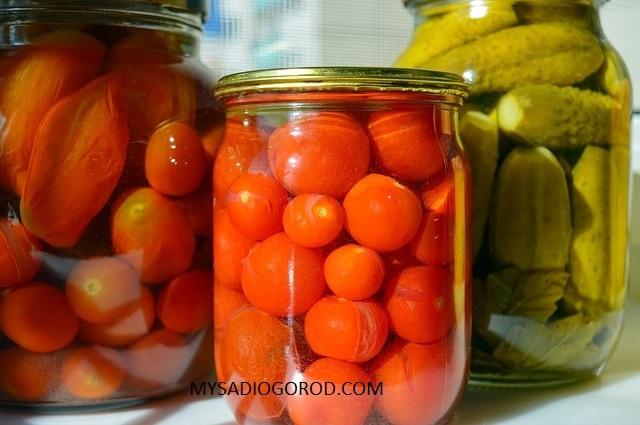 заготовки как хранить помидоры
