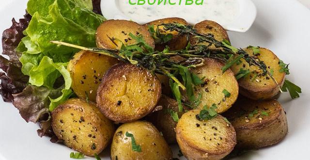 свойства картофеля