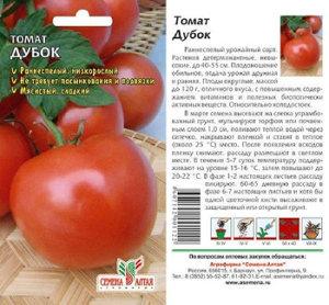 дубок сорта томатов