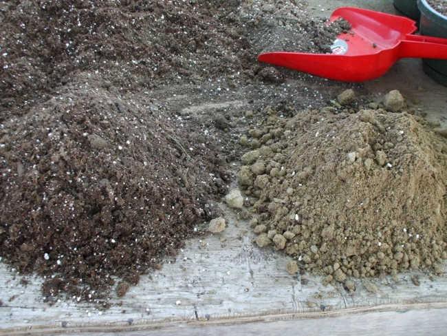 почву для тыквы