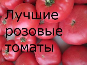 Лучшие розовые томаты