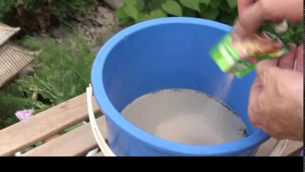 Народные средства для подкормок лука