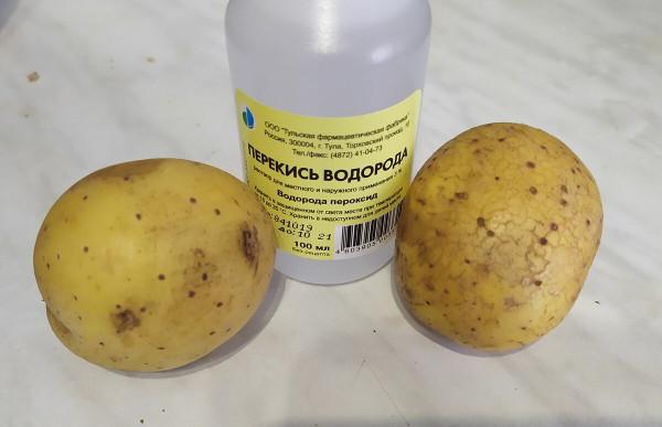 Народные средства для подкормок картошки