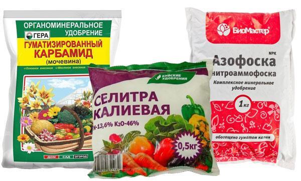 Подкормка картофеля азотом