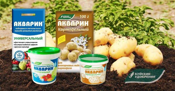 Подкормка картофеля фосфором