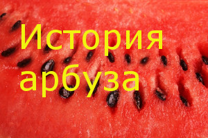 История арбуза