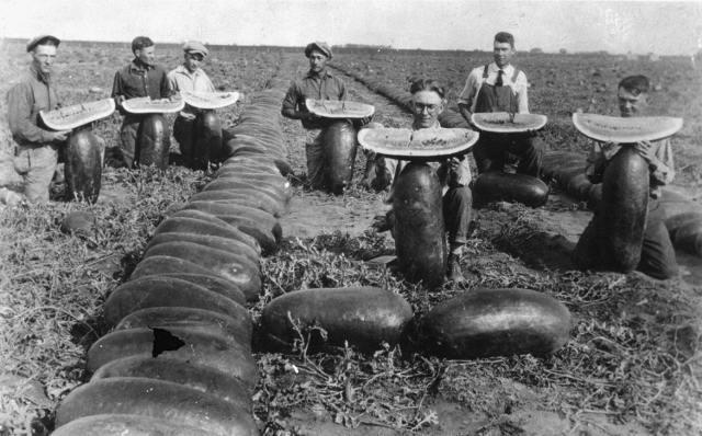 История арбуза на Руси