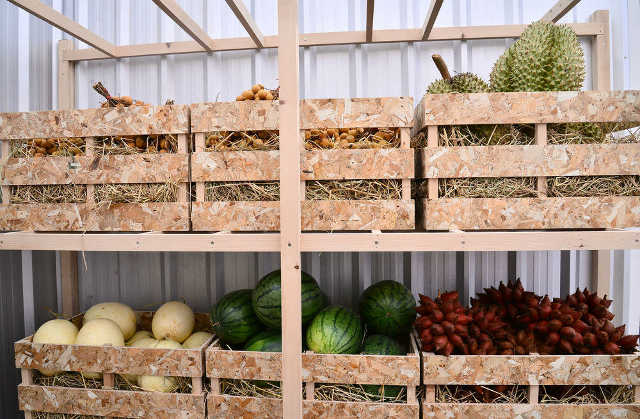 Как собирать и хранить урожай