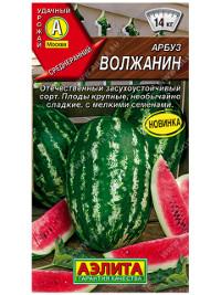 Волжанин сорта арбуза